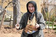 Videosu ilgi gören Tevhide nine, herkesi yetişecek üzümleri yemeye davet etti