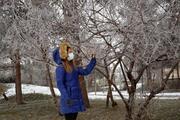 Hava sıcaklığı eksi 15 dereceyi gördü Muş buz kesti