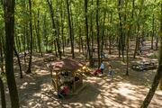 Avrupanın en büyük doğal yaşam parkı: Ormanya