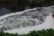 Büyük Menderes Nehrinde kirlilik 4ncü dereceye ulaştı