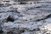 Burdur Gölünün köpürmesi endişe yarattı
