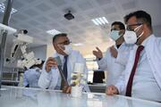 Türk bilim adamları kudret narının kemik kırığı tedavisinde kullanılabileceğini ispatladı