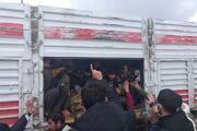 Bir kişinin öldüğü kaza sonrası TIRdan balık istifi 114 kaçak göçmen çıktı