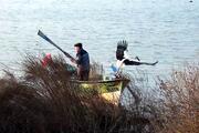 Yaren leylek 10ncu yılda da Bursaya geldi, balıkçı Adem Yılmaz çok mutlu...