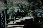 Lüks cip binanın bahçesine uçtu