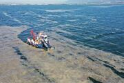 Kocaelinde deniz salyası için harekete geçildi