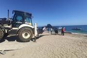 Mersinde sahile ölü oluklu balina vurdu 10 metre boyunda...