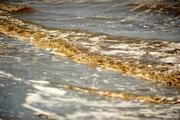 Kirlilik, Bandırma sahillerinin kumunu siyaha boyadı