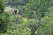 İYİ Partili Lütfü Türkkan'a ait kaçak çiftlik tahliye ediliyor