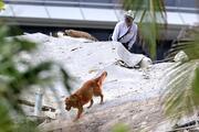 Miamide çöken binada umutlar tükeniyor