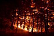 Mersin Aydıncıkta orman yangını