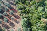 Kaçak avcılar drone ile yakalandı