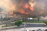 Son dakika... Manavgatta tarihin en büyük yangını Yangının dehşeti bu karelerde...