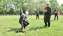 Avusturya'daki Türk şehitlerinin kabrine bayram ziyareti