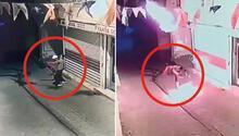 Diyarbakırda AK Parti Hani İlçe binasına molotoflu saldırı