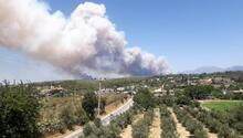 Son dakika... Antalya Manavgatta orman yangını