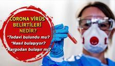 Corona Virüs belirtileri nedir, nasıl bulaşır Çin'den gelen tedavi ediyor mu? Kargodan virüs bulaşır mı?