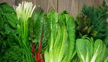 Sürekli yemeniz gereken 5 muhteşem yeşillik
