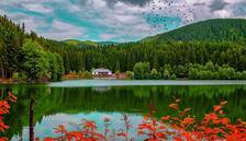 Sonbaharın renkli güzelleri: Tabiat parkları... 13 şehirden keşfedilmeyi bekleyen 17 tabiat parkı