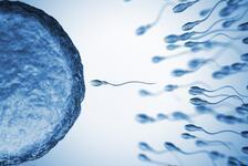 Hava ve çevre kirliliği sperm kalitesini düşürüyor