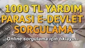 1000 TL sosyal yardım parası E-Devlet sorgulama ekranı.. Nakdi destek sorgulama nasıl yapılır