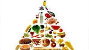 Hangi diyet ne yapıyor