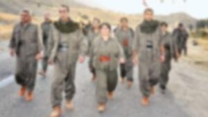 Kandil ve Mahmurdan gelenlere 61,5 yıl hapis
