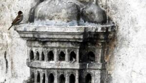 Osmanlı döneminin Kuş Evleri yok oluyor