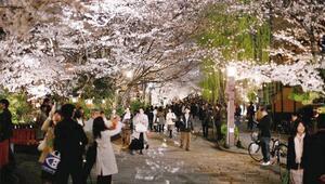 36 saatte Kyoto