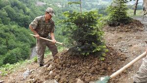 Maçkada, şehit Halit Avcı için hatıra ormanı kuruldu