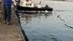 Panama-flagged cargo ship sinks in Turkey