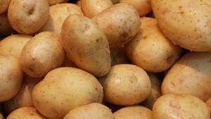 Patates 2.5 TL'nin altına inmezse ithalat başlıyor
