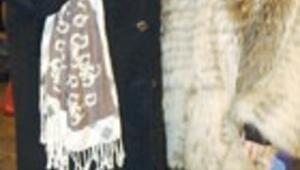 Kutup ekürisi (OYA AYDOĞAN, SEVİM EMRE)
