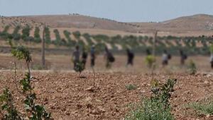 Kiliste askerle çatışmaya giren kaçakçı grubundaki bir çocuk öldü