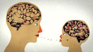 Dişi beyin empatide, erkek ise 3 boyutlu düşünmede iyi