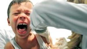 Veliler domuz gribi aşısını tutmadı