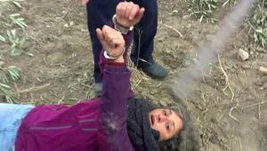 Zeytinlerini korumaya gelen köylülere özel güvenlikten kelepçe ve biber gazı
