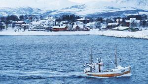 Norveç'te balık sefası