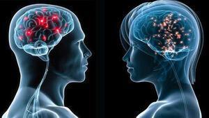 Kadın beyni ve erkek beyni arasındaki fark