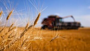 Buğday ithalatı uyarısı