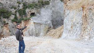 Akdeniz Foku'nun yuvalama alanında dozerle çalışma tepkisi