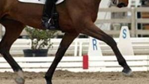 """Atlar bu kez """"başkent"""" için yarışacak"""