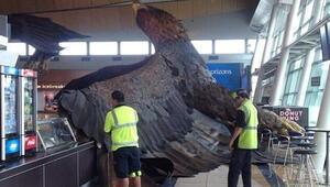 Yeni Zelandada deprem Hobbiti vurdu