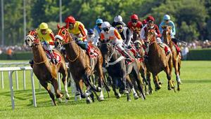 Atlar en büyük kupa için koşacak