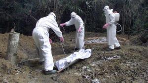 Afrikada ebola virüsü nedeniyle acil durum ilan edildi