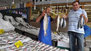 Sezonun ilk balığı Ankaraya ulaştı