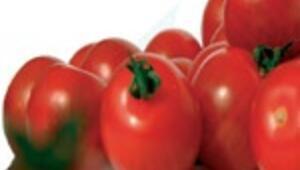 Yaşlanmaya karşı domates