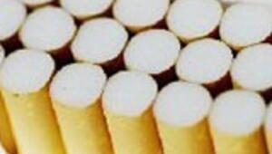 Kaçak sigarada büyük vergi kaybı