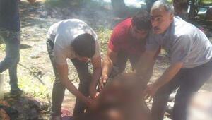Hürriyet Canlı bomba 18 yaşında IŞİD sempatizanı dedi, Reuters IŞİD yaptı diye duyurdu
