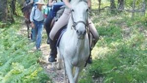 Bartın dağlarında atlı safari